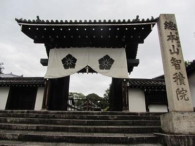 IMG_9278 chishakuin