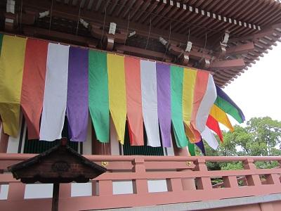 IMG_9284 chishakuin