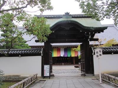IMG_9289 chishakuin