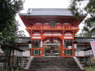 IMG_9268 新日吉神宮