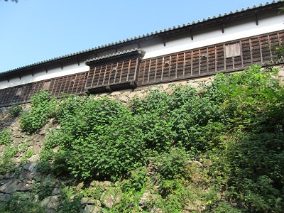 IMG_8547 福岡城