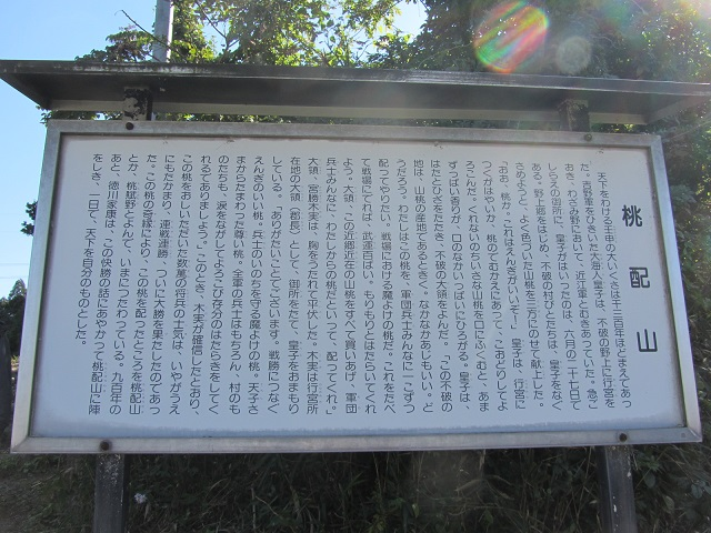 IMG_8958 桃配山