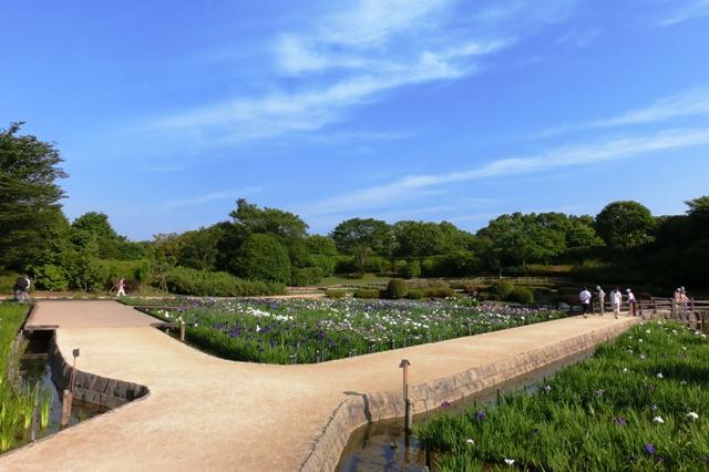 花しょうぶの水無月園