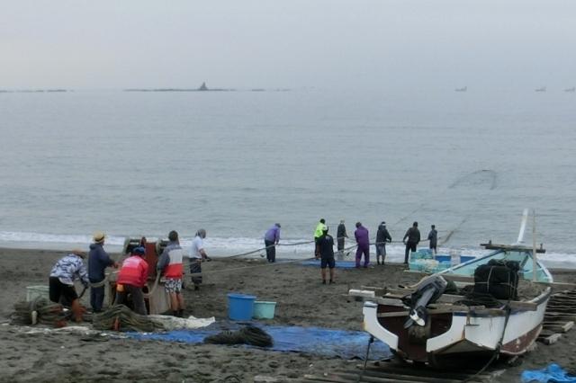 浜の漁師による地引き網