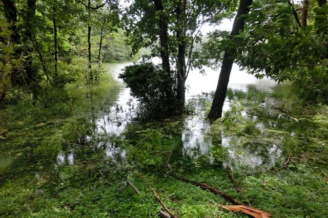 増水で周囲の道路が冠水した宝が池