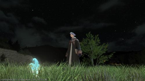 星空が綺麗。
