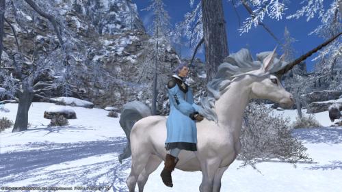 雪と白馬。