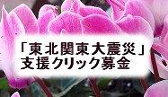 大震災支援募金新アイコンKT20131025