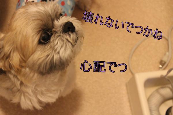 ・搾シ祢MG_5865_convert_20130606213852