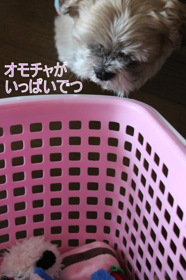 ・搾シ肘MG_5861_convert_20130606213912