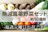 無減農薬野菜セット