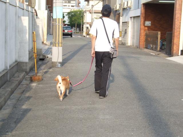 20130526-上汐公園にて 004