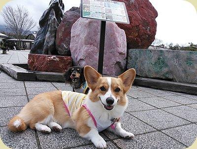 富士山博物館前