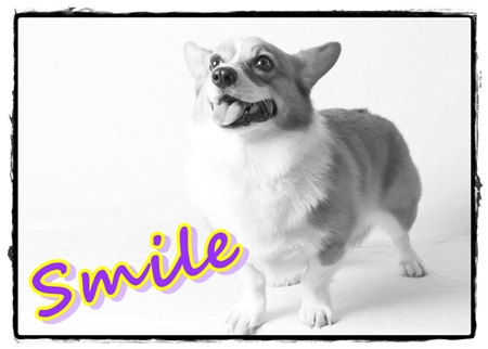 Best of Smile