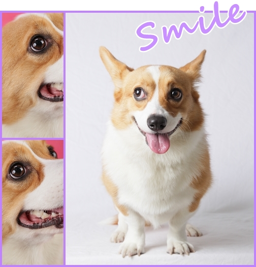 Smile!!!.jpg