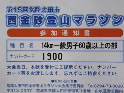 IMGP9150.jpg