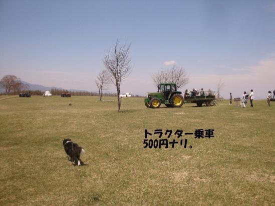 20130511_08.jpg