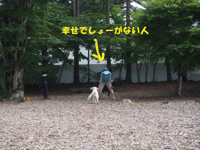 20130730__13.jpg
