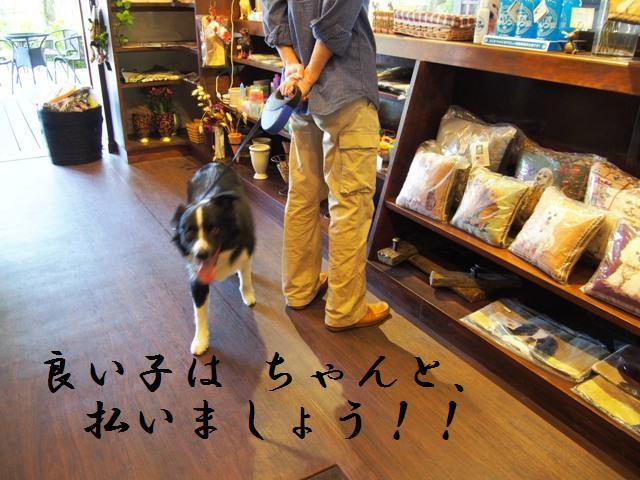 20130915_16_NASU_11.jpg