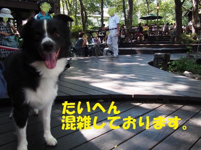 20130915_16_NASU_19.jpg