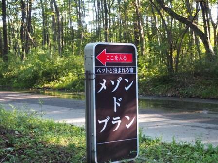 201309NASU_Pen_15.jpg