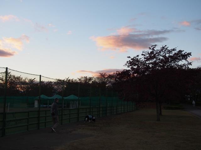 20131113_18.jpg