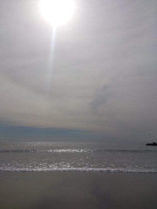 13.09.19.つれづれ1
