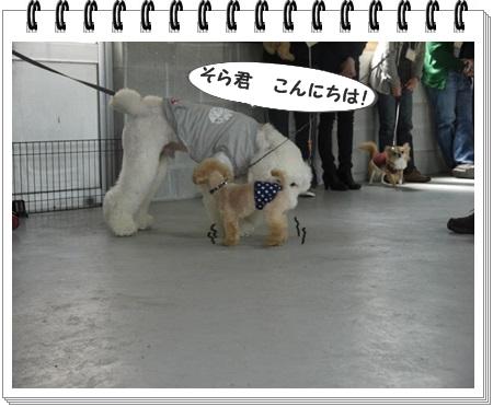 20130424 7 ごあいさつ