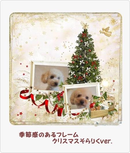 130527 2クリスマスそらりく