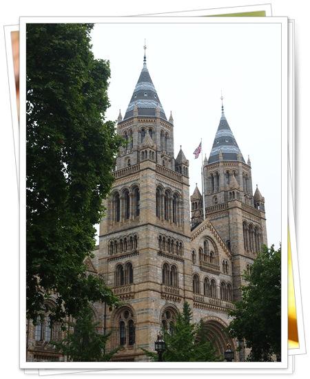 131013 6自然史博物館