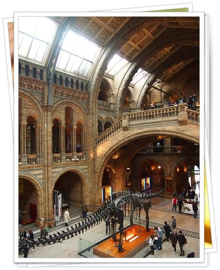 131013 7自然史博物館恐竜