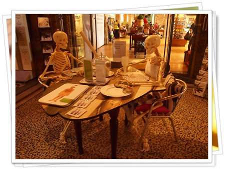 131013 9自然史博物館ディスプレイ