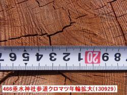 RIMG44600年輪②