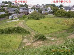 RIMG44627棚田遠景