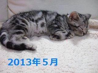 201402225.jpg