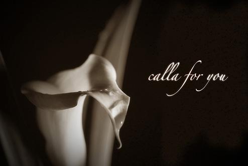 calla for you