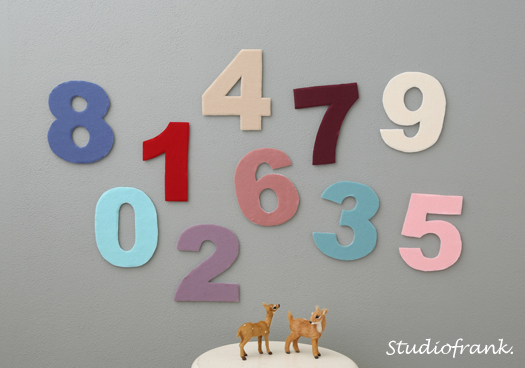 2T9A6365_fc1.jpg