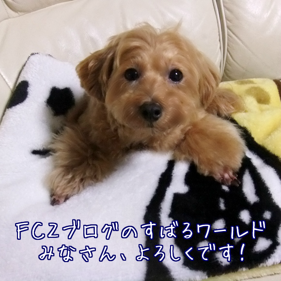 2013061621091676b.png