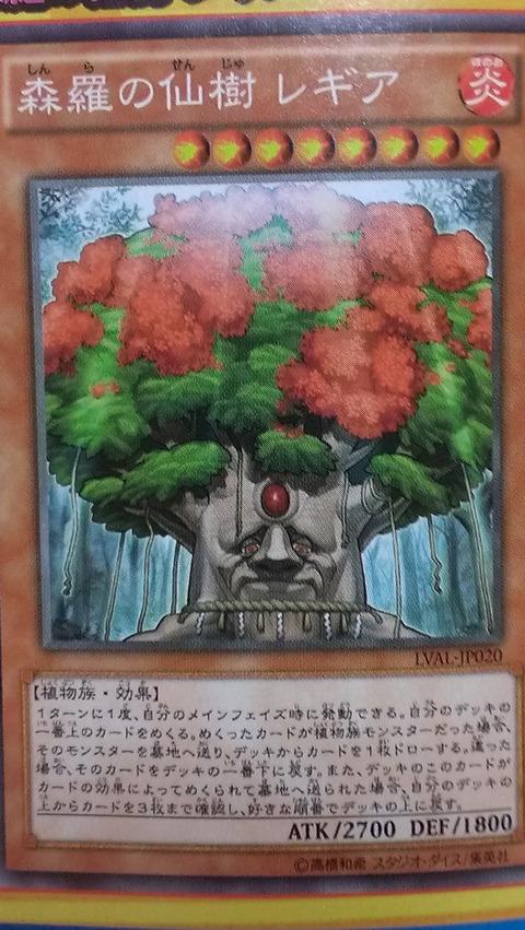 森羅の仙樹レギア