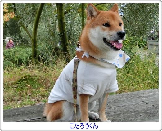 小太郎くん