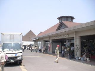 道の駅桜島