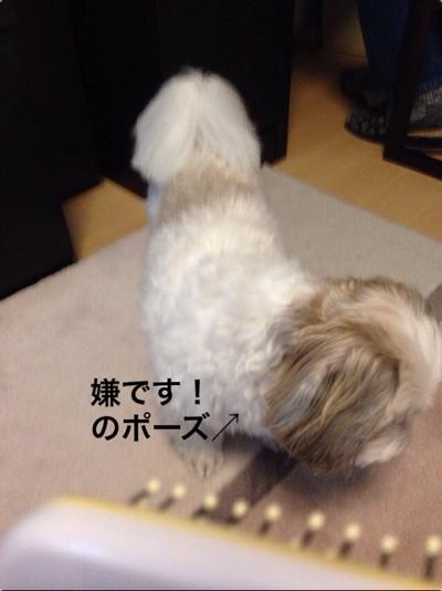 fc2blog_20140120165654eb3.jpg