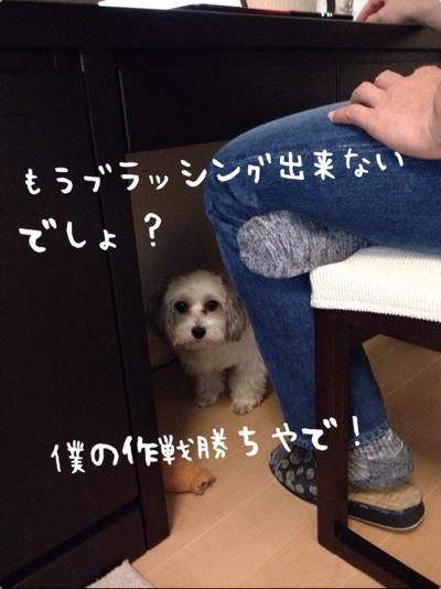 fc2blog_201401201701169e6.jpg