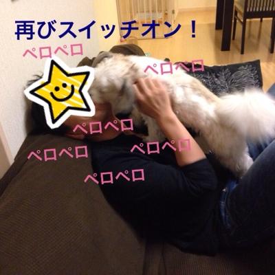 fc2blog_2014021616433894c.jpg