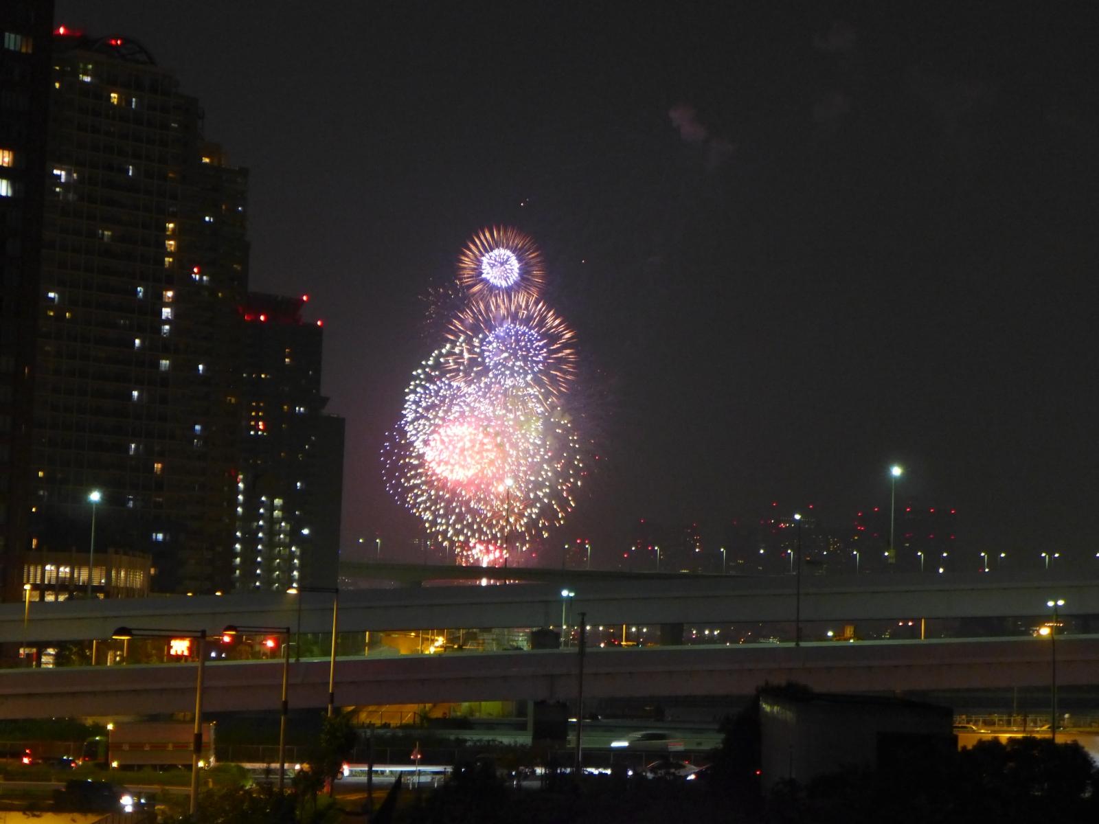 (130810) 花火01
