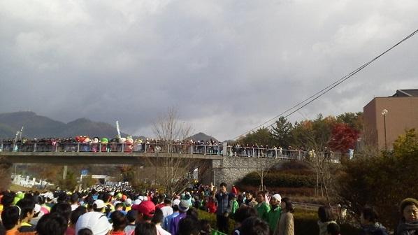 fukutiyama5