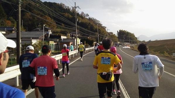 fukutiyama28.jpg
