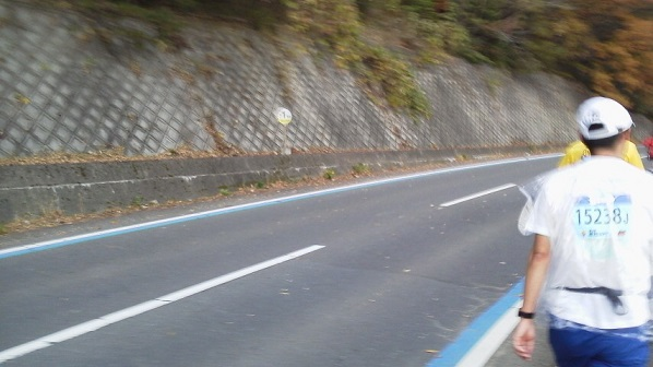 fukutiyama33.jpg