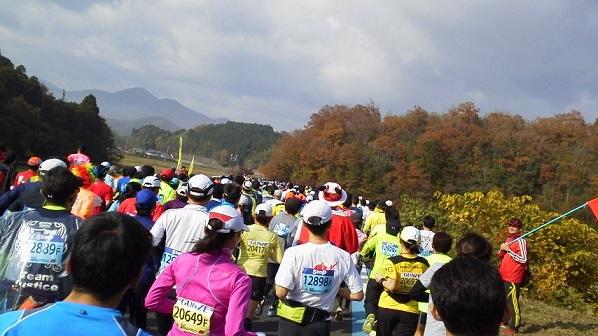 fukutiyama6.jpg