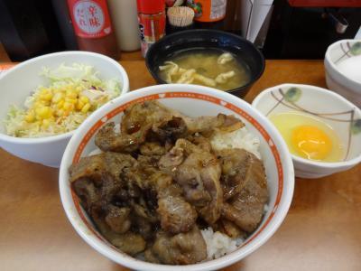 chikara_don.jpg